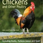 Backgarden Chickens & Other Poultry Book