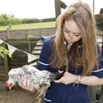 Chickens Illness & Problems