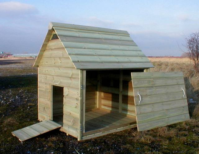 Duck Housing Accommodation And Enclosed Runs