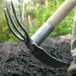 Frugal Garden Hand Tools - A Guide