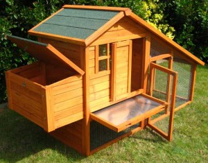 Low Cost Chicken Coops