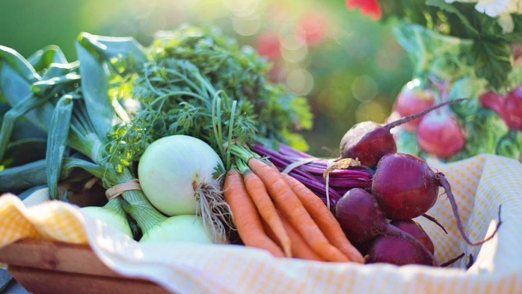 Always fresh vegetables-1